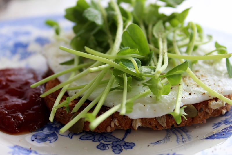 egg and sprout sandwich